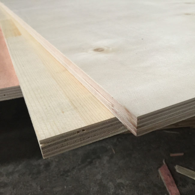 Birch Faced Furniture Decoration Commercial Grade Plywood 12% Moisture